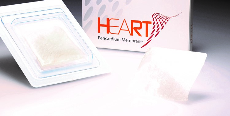 Heart DM