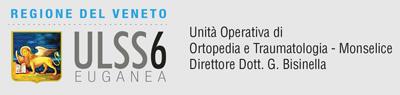 ULSS6 Regione Veneto